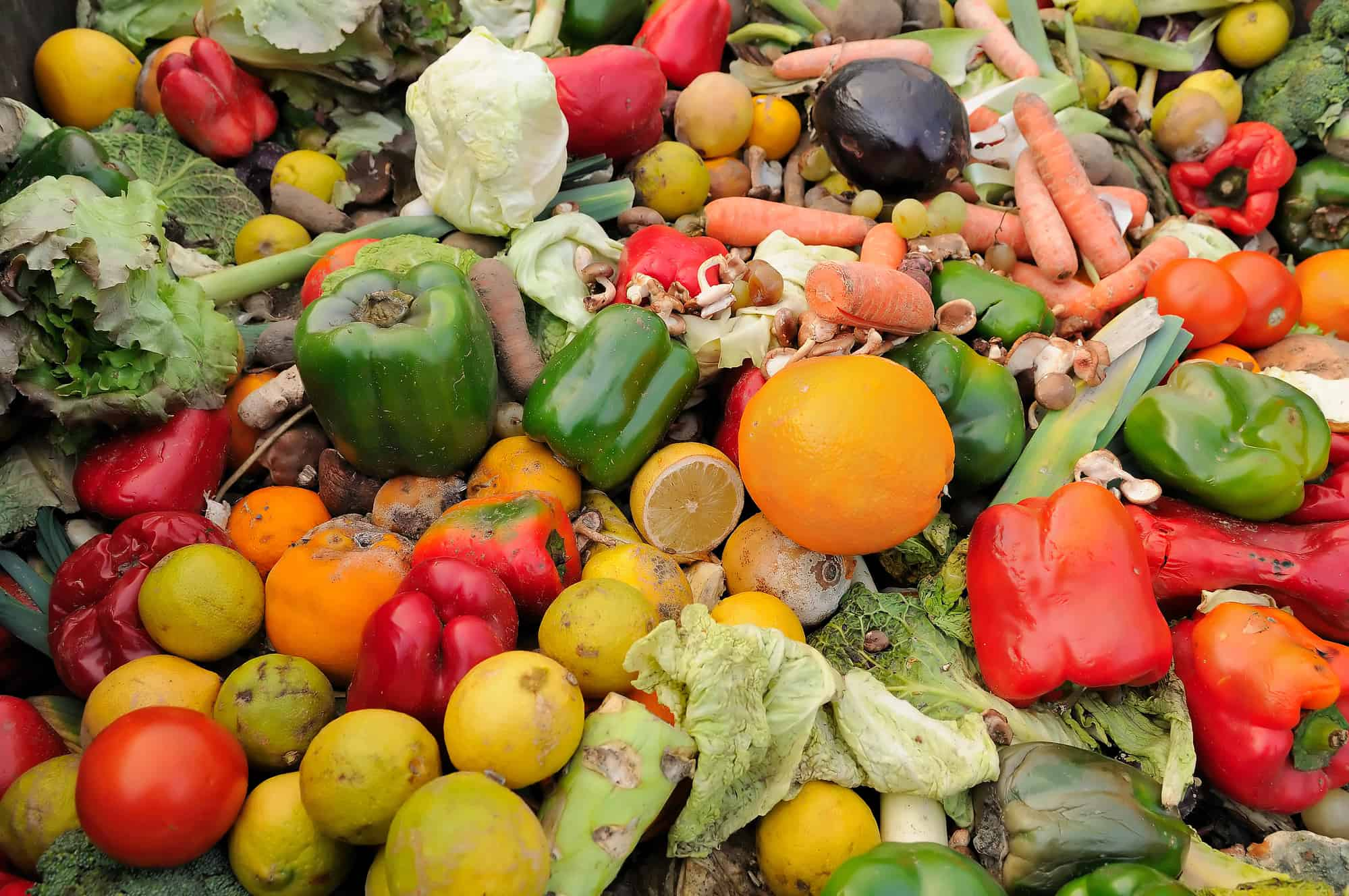 3.6m tonnes of food is wasted before reaching UK supermarkets